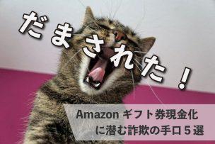 amazonギフト券 現金化 詐欺